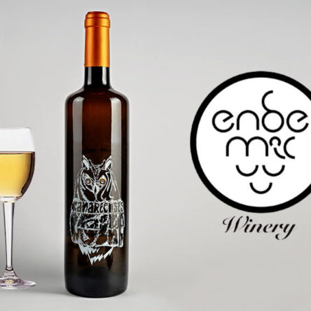 Asio Otus canariensis White wine – Endemic Winery